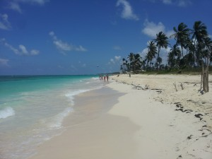 Majestic Elegance Punta Cana Beach Photo