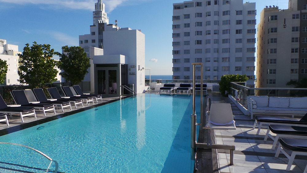 The Gale Rooftop Pool Photo