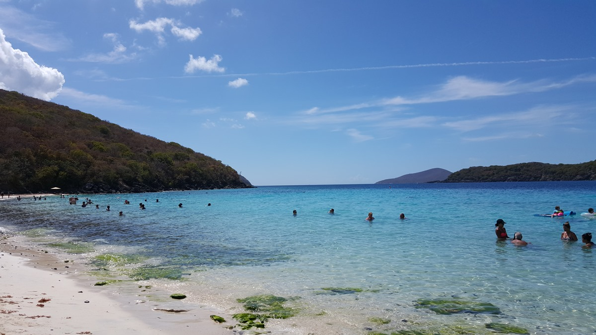 Is there Seaweed in St Thomas?