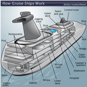 10 Most Bizarre Questions Asked By 1st Time Cruisers ...